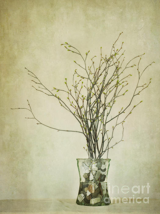 Spring Unfolds Print by Priska Wettstein
