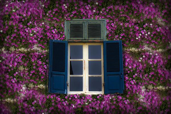 Spring Window Print by Radoslav Nedelchev