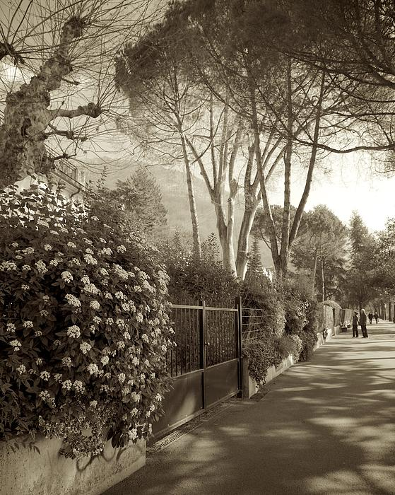 Colleen Williams - Springtime in Montreux