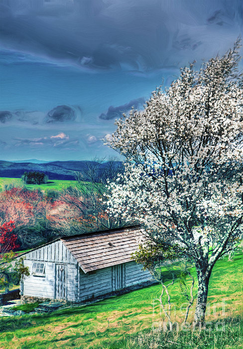 Springtime In The Blue Ridge Mountains II Print by Dan Carmichael