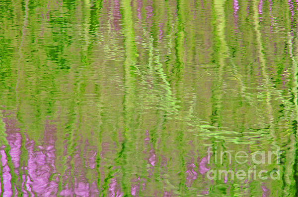 Springtime Reflections Print by Cindy Lee Longhini