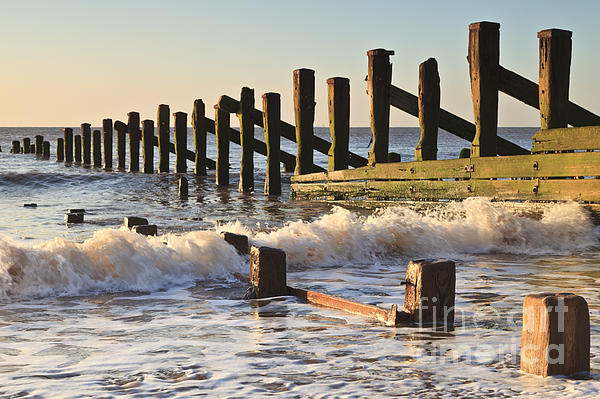 Spurn Point Sea Defence Posts Print by Colin and Linda McKie