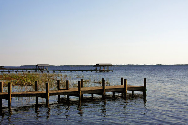 St Johns River Florida - Walk This Way Print by Christine Till