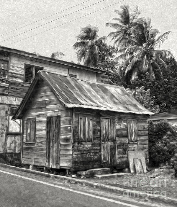 St Lucia - Old Shack Print by Gregory Dyer