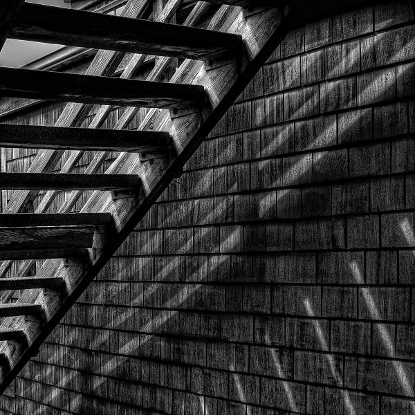Stairs Print by David Patterson