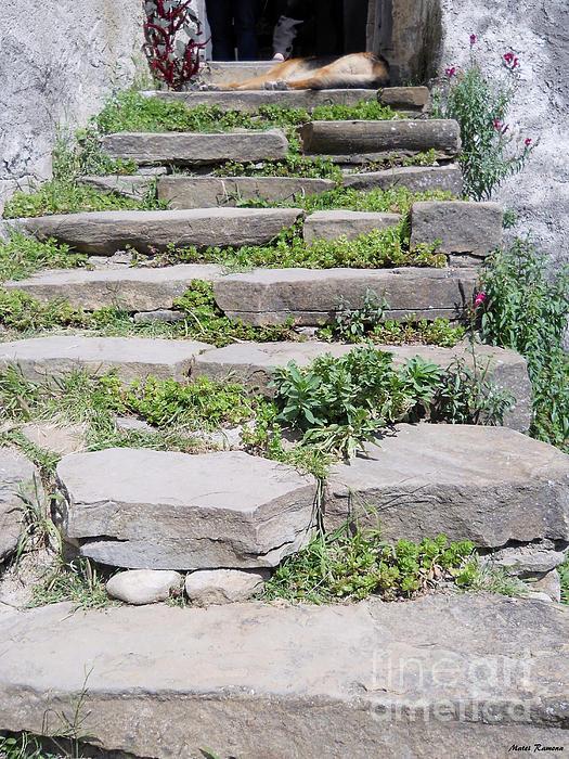 Ramona Matei - Stairs