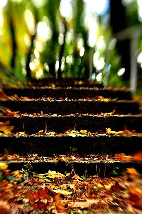 Stairs To Heavan Print by Reka Lendvai