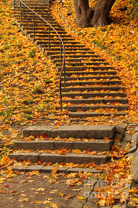 Kerstin Ivarsson - Stairs with Autumn Leaves