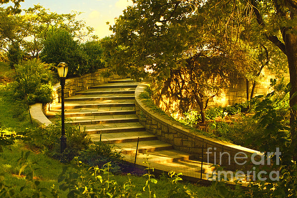 Stairway To Nirvana Print by Madeline Ellis