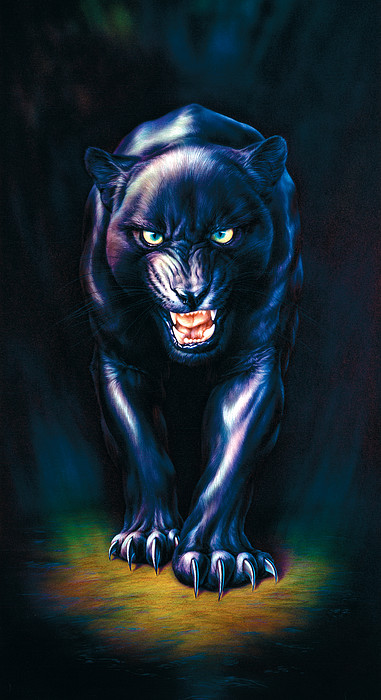 Stalking Panther Print by Andrew Farley