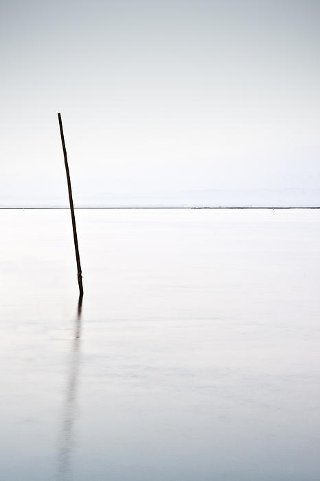 Standing Alone Print by Jorge Maia