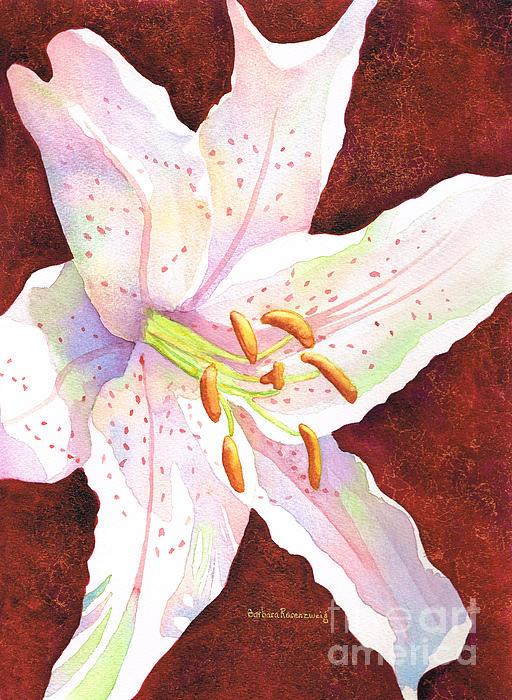 Barbara Rosenzweig - Star Gazer lily