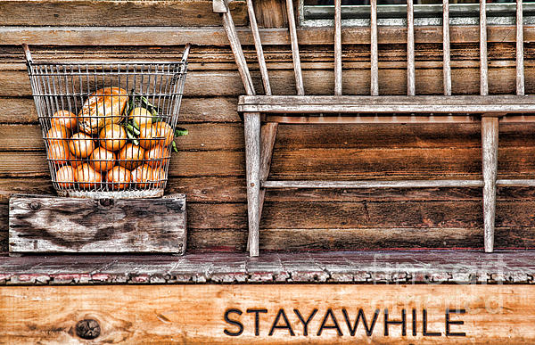 Stayawhile Print by Diana Sainz