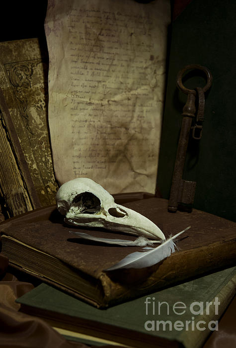 Still Life With Old Books Rusty Key Bird Skull And Feathers Print by Jaroslaw Blaminsky