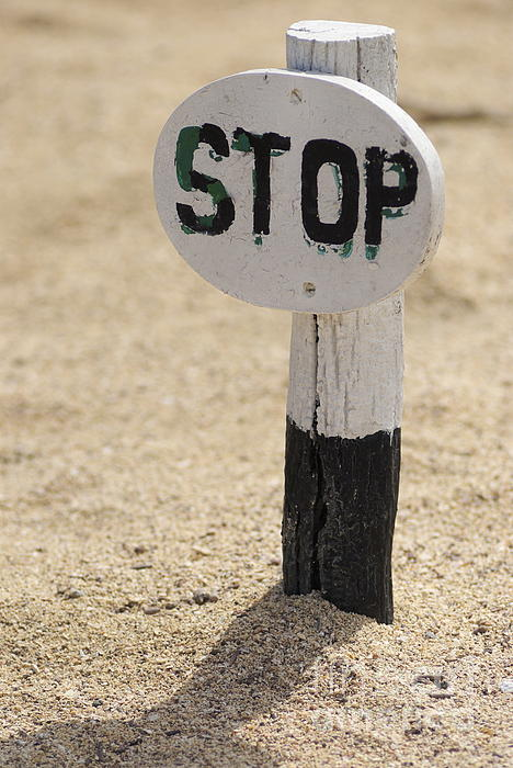 Stop Sign On Sand Print by Sami Sarkis