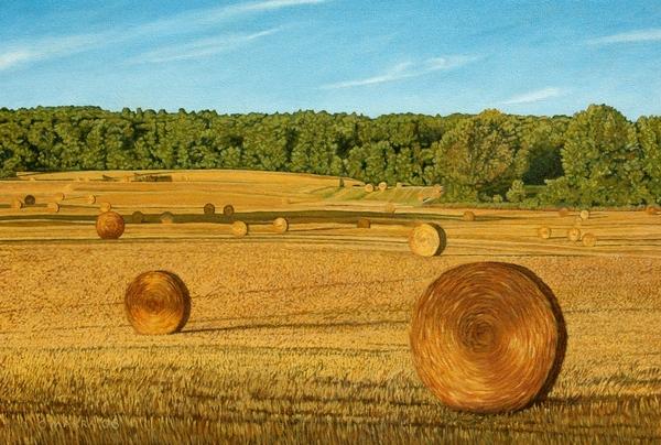 Straw Wheels - North Pickering Print by Allan OMarra