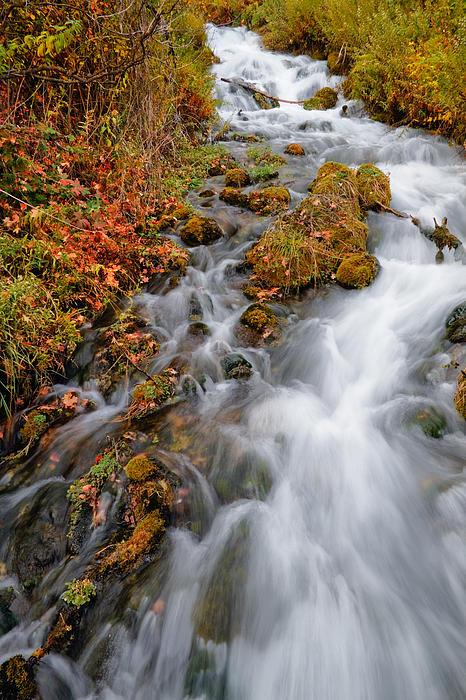 Stream In Autumn Print by Utah Images