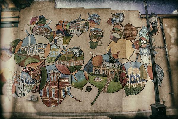 Street Wall In Fort Collins Print by Lijie Zhou