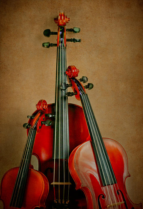 Stringed Trio Print by David and Carol Kelly