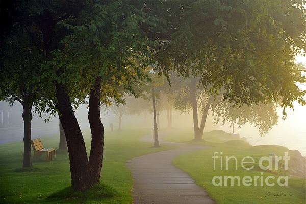 Stroll In The Fog Print by Terri Gostola