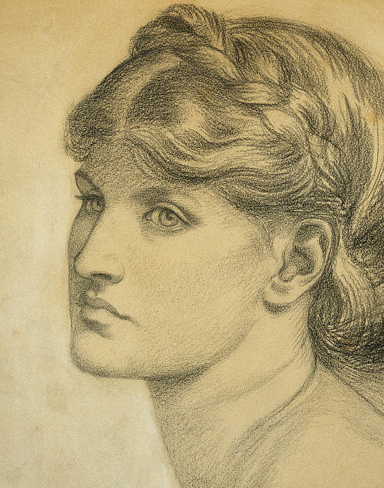 Study Of A Head For The Bower Meadow Print by Dante Charles Gabriel Rossetti