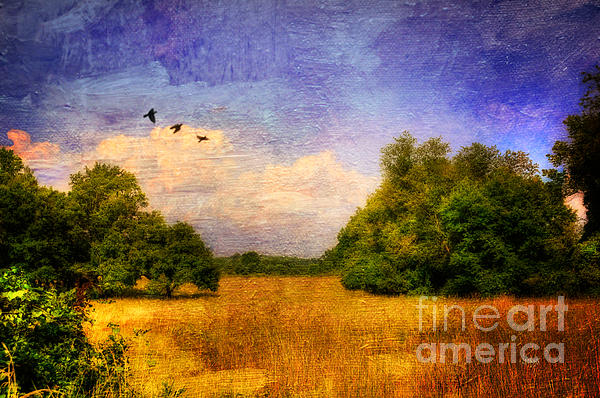Summer Country Landscape Print by Lois Bryan