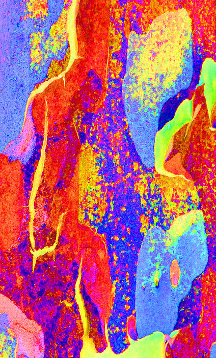 Summer Eucalypt Abstract 27 Print by Margaret Saheed