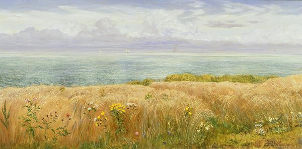 Summer On The Cliffs Print by John Brett