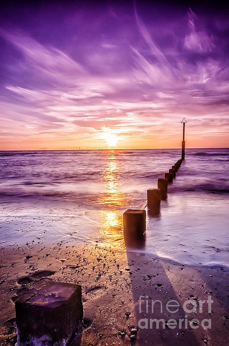 Summer Sunset Print by Darren Wilkes