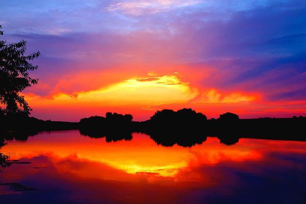 Lynn Hopwood - Summer Sunset