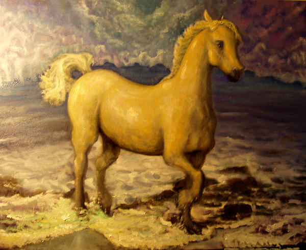 Sun Blessed Horse Print by Graham Keith