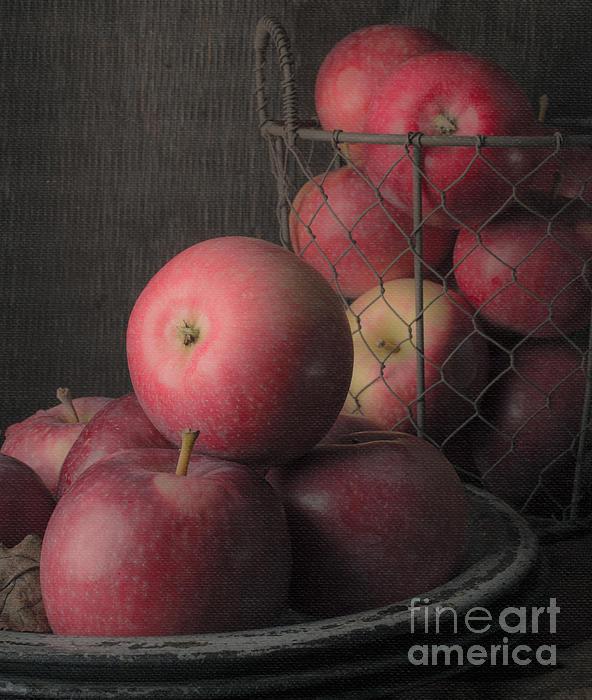 Sun Warmed Apples Still Life Standard Sizes Print by Edward Fielding