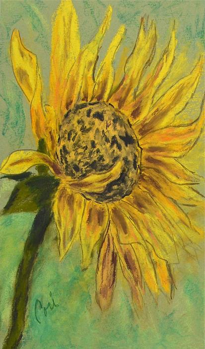 Sunburst Print by Cori Solomon