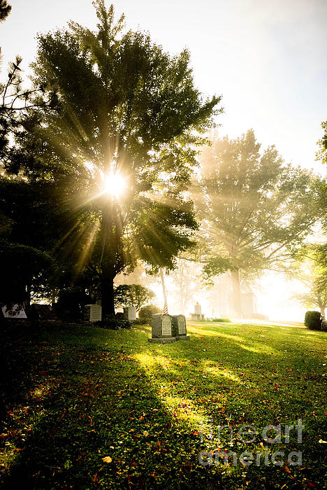Sunburst Over Cemetery Print by Amy Cicconi