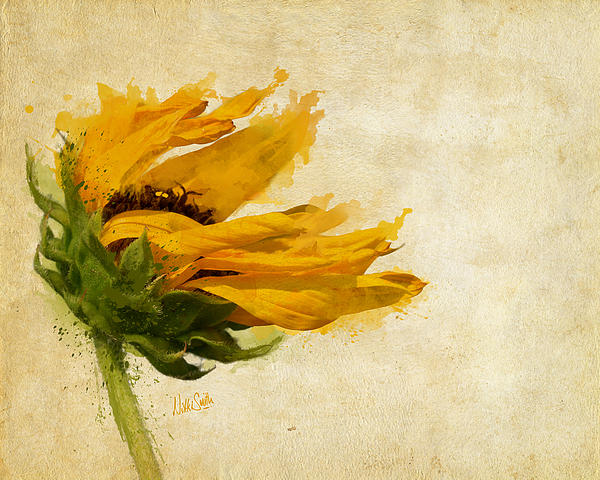 Nikki Marie Smith - Sunflower Breezes