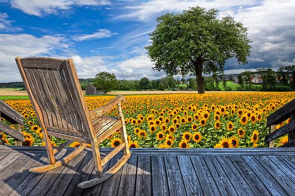 Sunflower Farm Print by Debra and Dave Vanderlaan