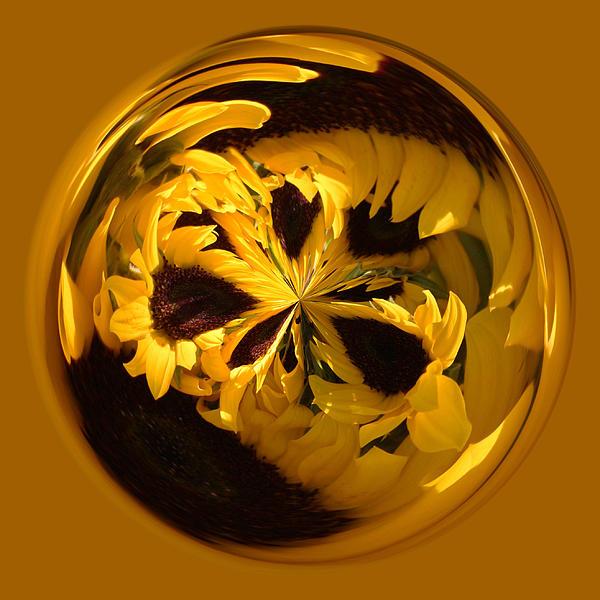 Sunflower Orb Print by Paulette Thomas