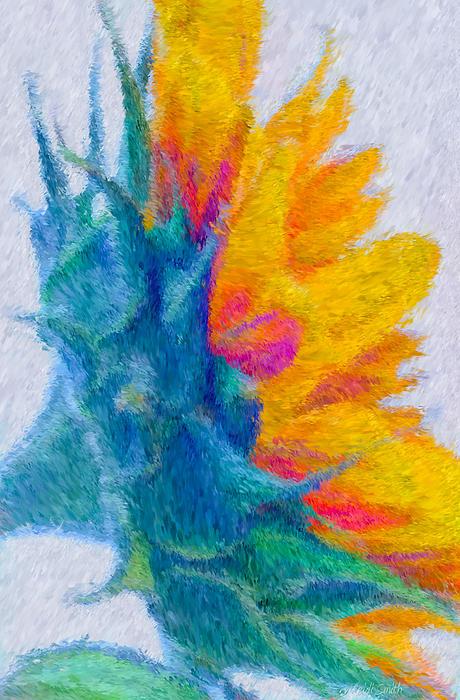 Sunflower Profile Impressionism Print by Heidi Smith