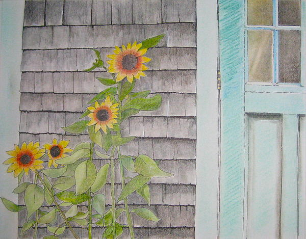 Sunflowers By The Shed Print by Pat Diemand
