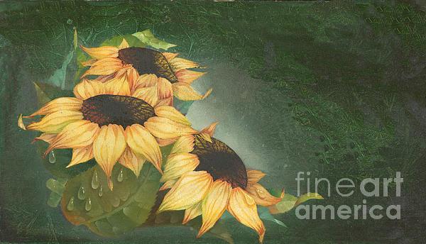 Sunflowers Print by Doreta Y Boyd