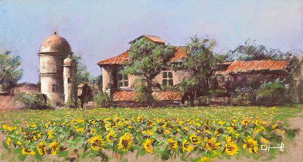 Cecile Houel - Sunflowers field