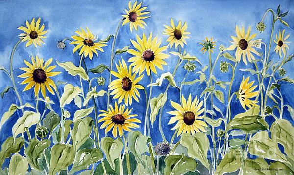 Joan Hartenstein - Sunflowers