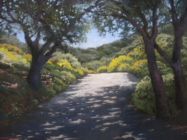Sunlit Road Print by Maralyn Miller