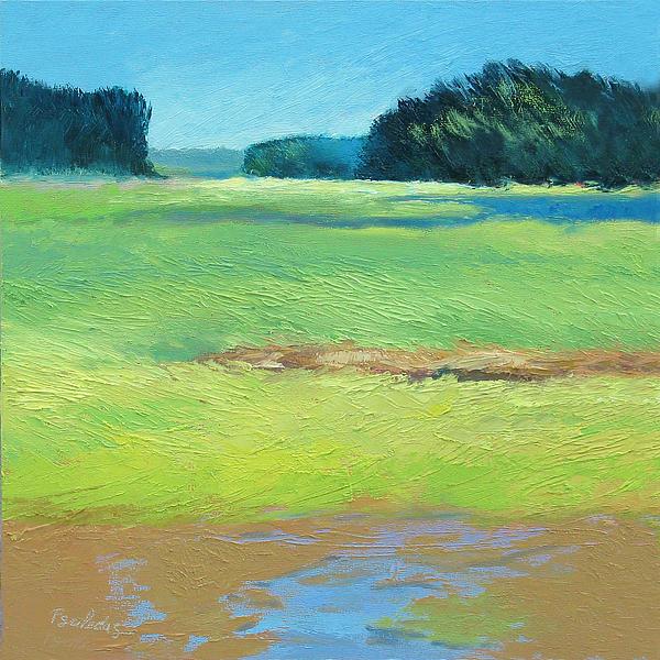 Sunny Marsh Print by Sheila Psaledas
