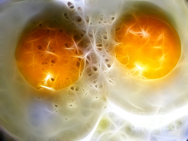 Sunny Side Up Print by Wingsdomain Art and Photography