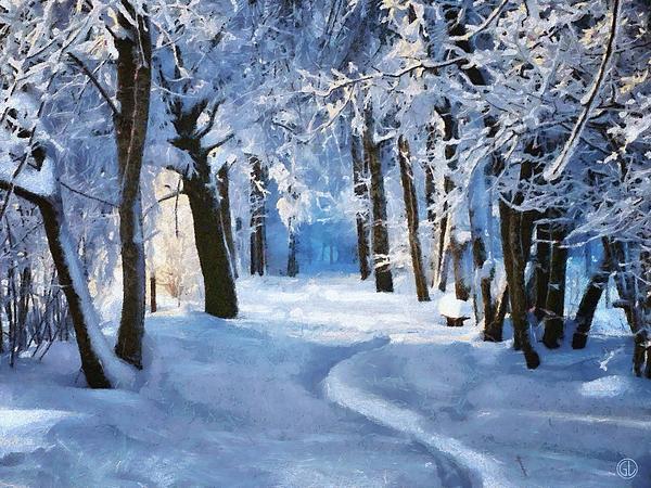 Sunny Snowy Day Print by Gun Legler