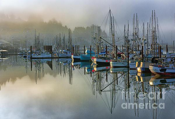 Sunrise At Newport Harbor Print by Sandra Bronstein
