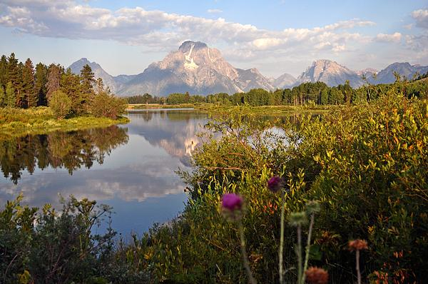 Sunrise At Oxbow Bend 5 Print by Marty Koch