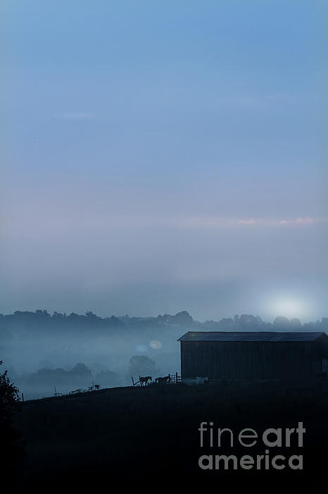Sunrise In Kentucky Print by Stephanie Frey