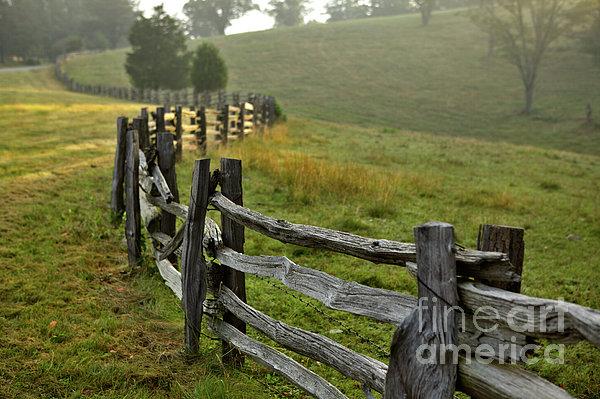 Sunrise Meadow - Blue Ridge Parkway I Print by Dan Carmichael
